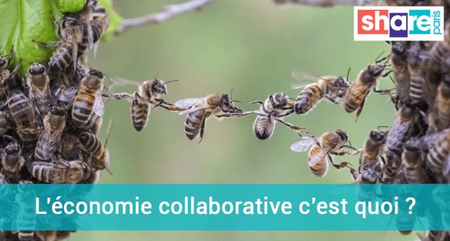 Art-3.-L-economie-collabora